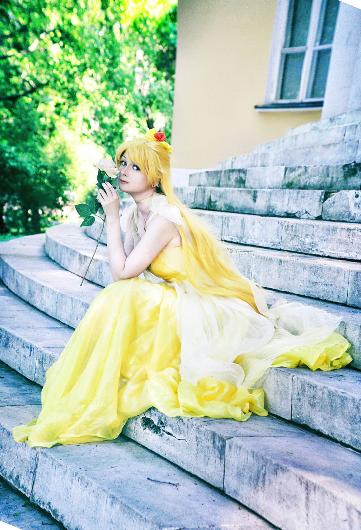 Princess Venus from Sailor Moon