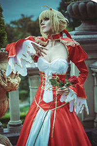 Servant Saber from Fate/Grand Order