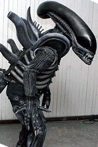 Alien vs. Ripley from Alien